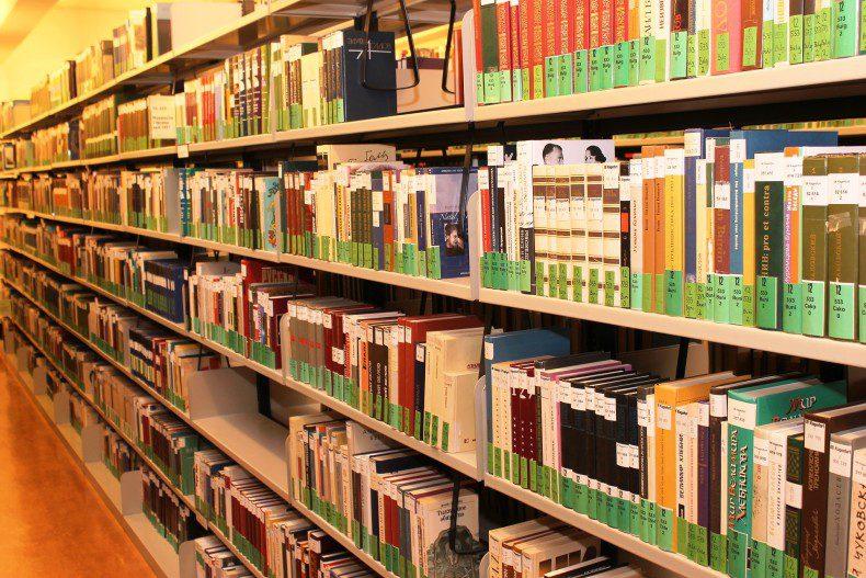 שיקום הספרייה בגונן