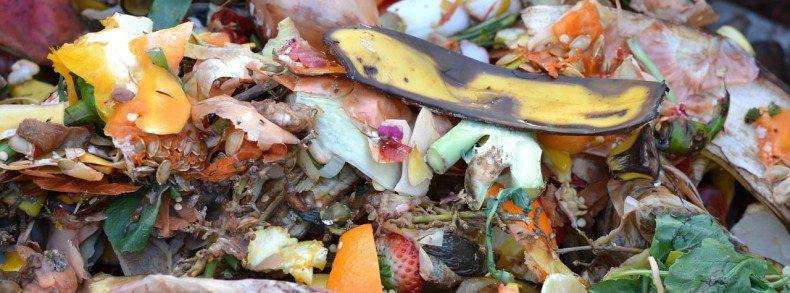 הקפדה על הפרדת פסולת