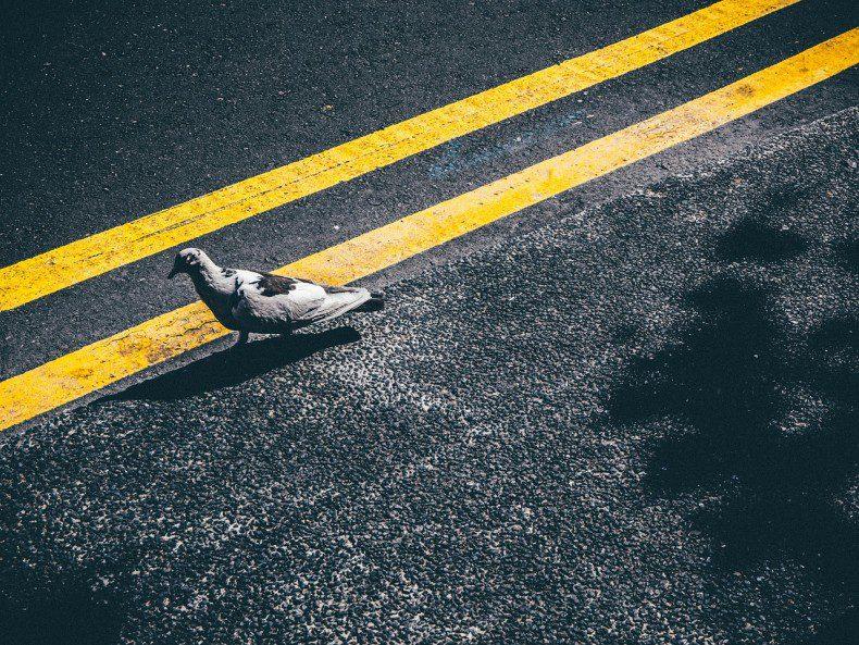 עבודות צביעה וסימון בחניית האלונית ובכבישי גישה